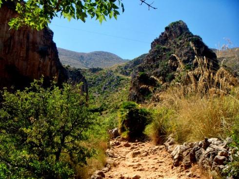 Riserva dello Zingaro - sentiero di mezza costa