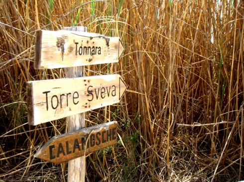 Itinerari dell'oasi di Vendicari - Foto di RedMade